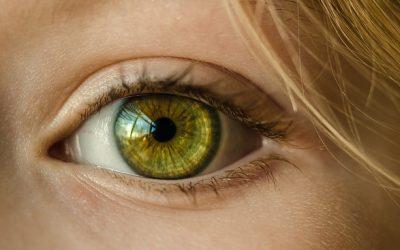 Les yeux verts, l'importance de la génétique